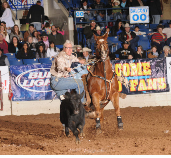 SandHills Rodeo and Stockshow